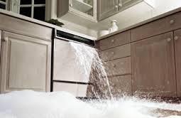 Dishwasher Repair Northridge
